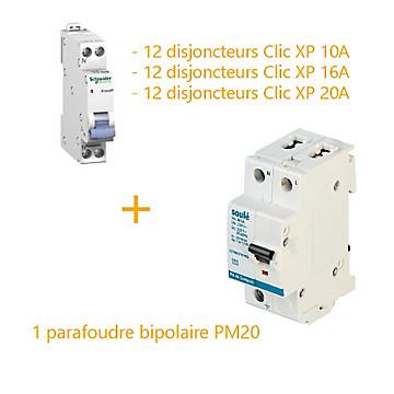 1 parafoudre bipolaire SOULÉ PM20 + 36 disjoncteurs modulaires peignables Schneider Electric