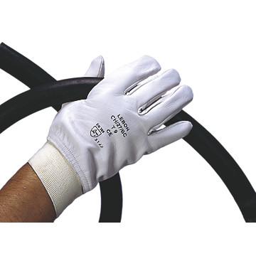 Gants de travail en cuir ch/27/bc Lebon Protection