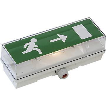 Bloc Autonome d'éclairage de Sécurité (BAES) STD 65 C LUMINOX Cooper