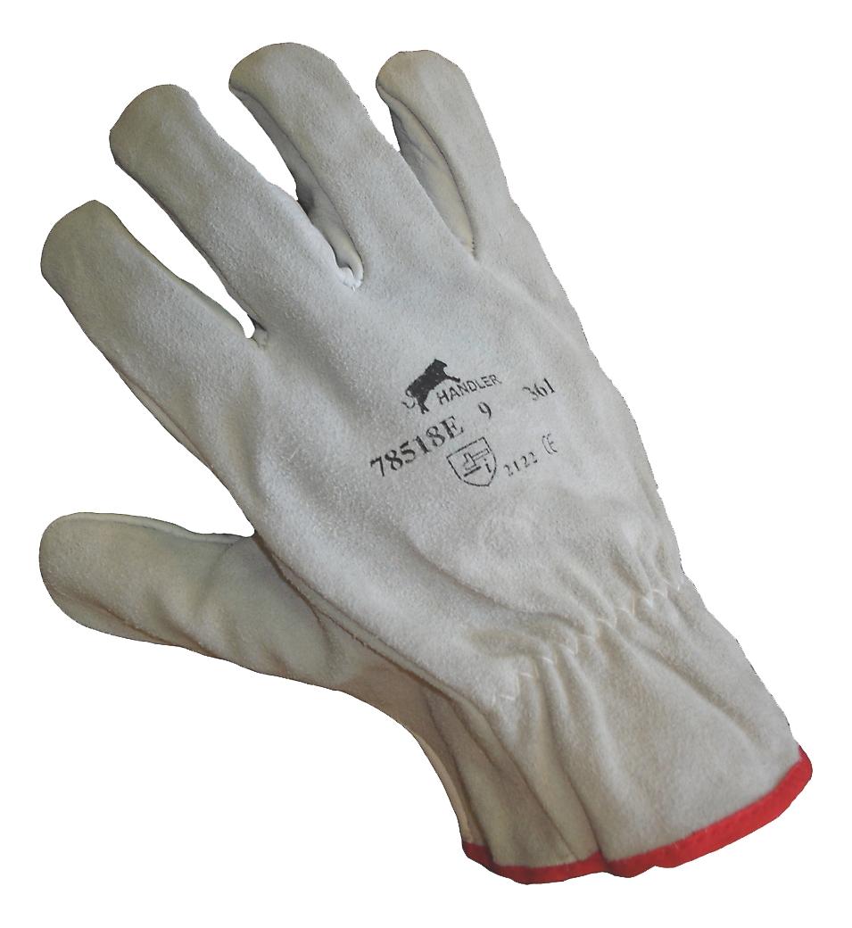 Gants Handler - 10 paires Procovès
