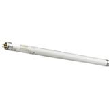 Tube fluo T5 Mini standard