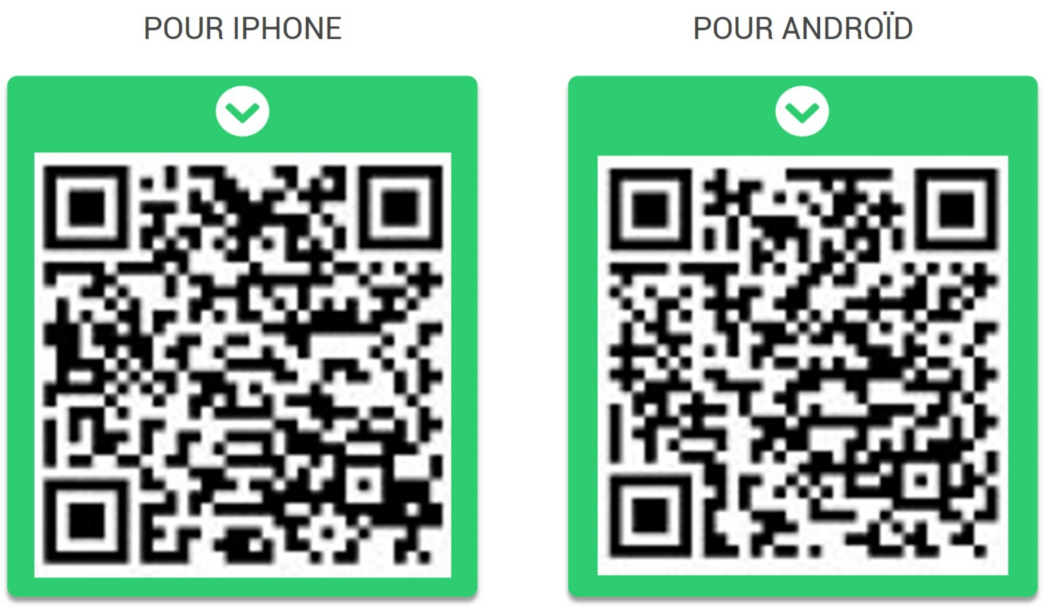 scanner QR code Mabéo Direct